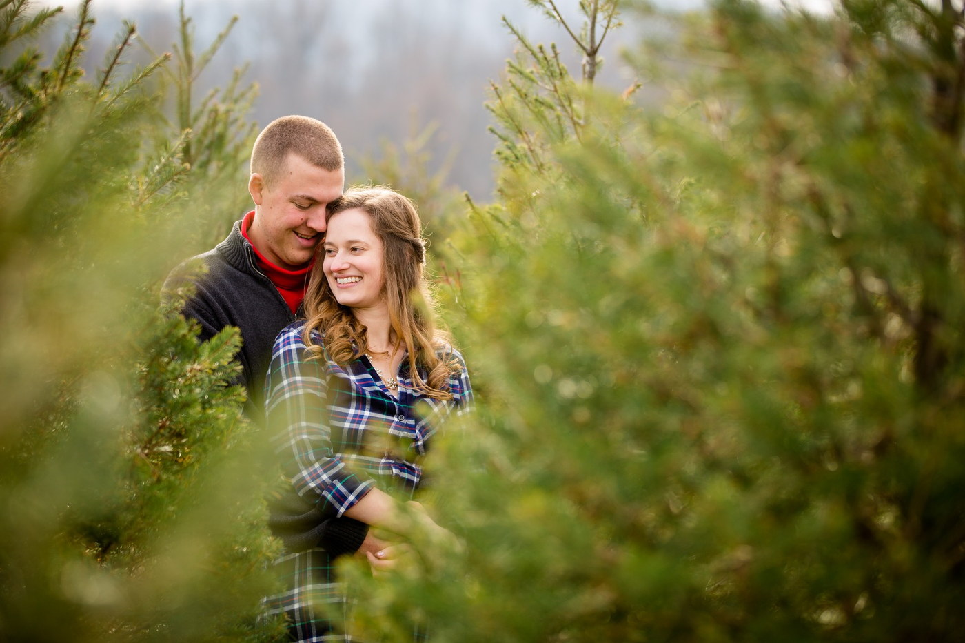 tree farm engagement photography